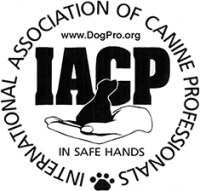 International Association of Canine Professionals (IACP) Badge - Leader of the Pack Canine Institute - Doggy Day Care